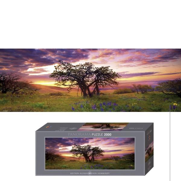 Dąb  o zachodzie słońca - Sklep Art Puzzle