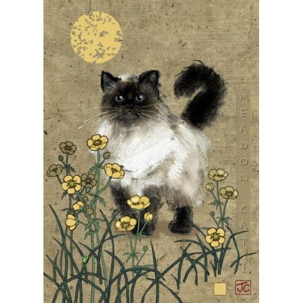 Cats, Kot na łące - Sklep Art Puzzle