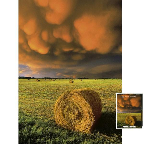 Potęga natury - Zapowiedź burzy - Sklep Art Puzzle